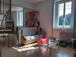 Appartement Duplex 70 m² habitable 120 m² au sol
