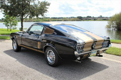 Ford Mustang Gta fastback 1968 prix tout compris