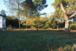 Terrain viabilisé 1230 m² Hors lotissement 40200 Mimizan