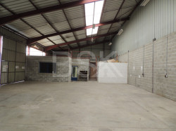 Bâtiment industriel/Entrepôt de 380 m² + Auvent de 310 m²  sur terrain de 1138 m²