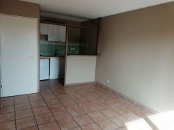 Appartement Toulouse 2 piece(s) 45 m2