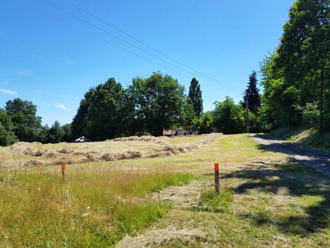 Entre Barbezieux et Montmoreau Maison ancienne de 100 m² isolée + terrain de 2,5 hectares