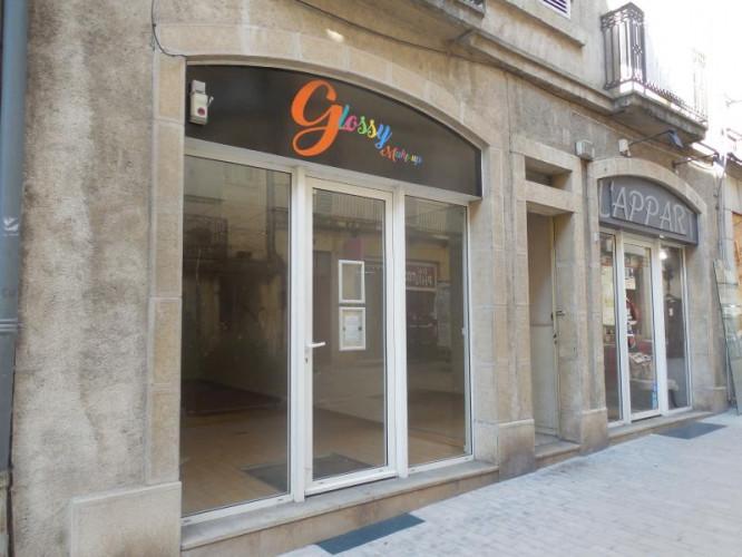 DOLE, 39100, à vendre Immeuble de rapport 1T1, 1T5, 1T2, 2 surfaces commerciales en centre ville