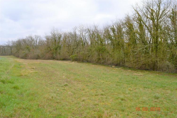 terrain plat constructible de 1600 m² à Mouthiers sur boême