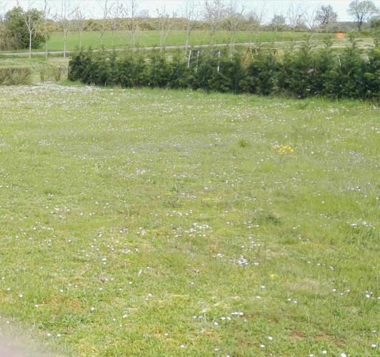 ASLONNES terrain viabilisé 838 m2 au prix de 39196 EUROS
