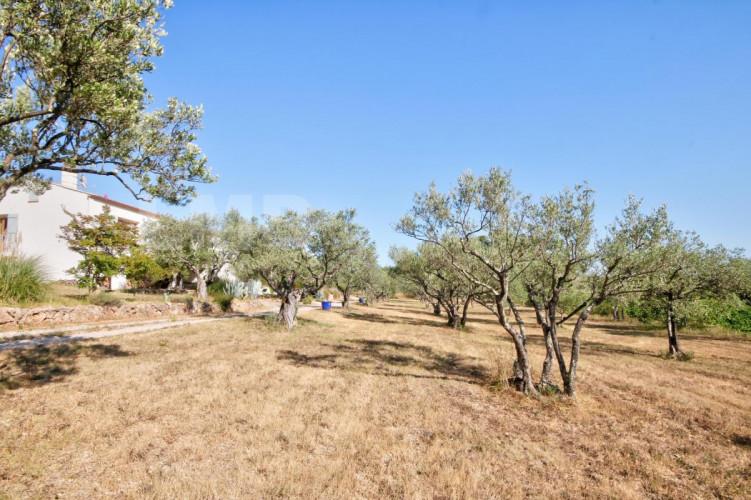 DRAGUIGNAN Villa 7 pièces sur terrain de 9000 m² avec oliveraie VUE EXCEPTIONNELLE