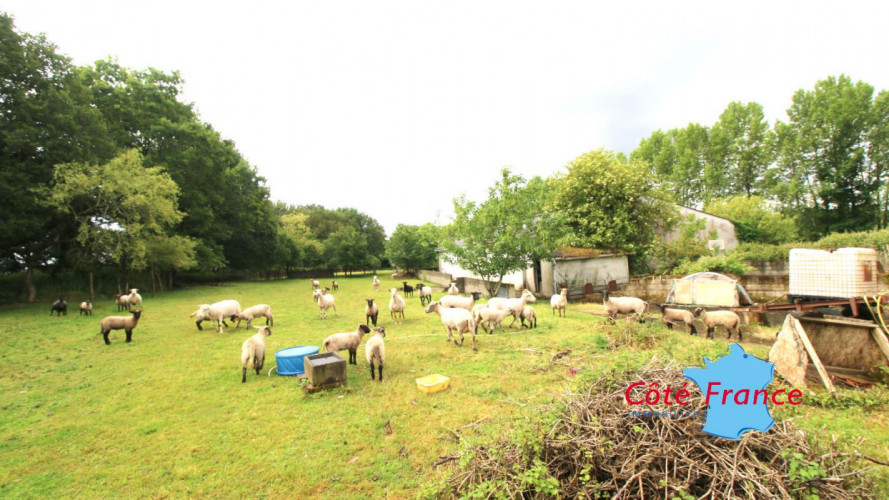 FINISTERE COLLOREC Corps de ferme avec 2 maisons (une habitable) et des dépendances sans voisinage avec des sources sur 4,4ha de terrain