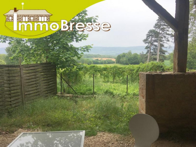 Domsure - A louer appartement type 2 - 45 m² - Cour privative