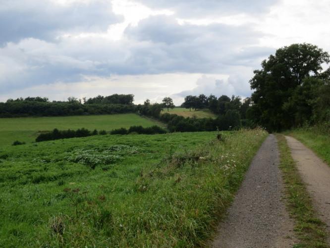 Grands terrains agricoles avec bâtiments